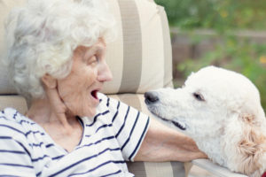 Seniors Diagnosed with Alzheimer's or Dementia Benefit from the MAP Approach: Music, Art, and Pets